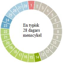 ägglosningkalender